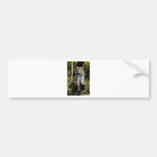 Hi-Res Tiger in Muenster Bumper Sticker