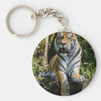 Hi-Res Tiger in Muenster Keychain