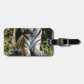 Hi-Res Tiger in Muenster Luggage Tag