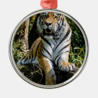 Hi-Res Tiger in Muenster Metal Ornament