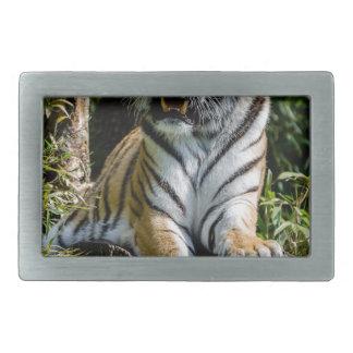 Hi-Res Tiger in Muenster Rectangular Belt Buckle