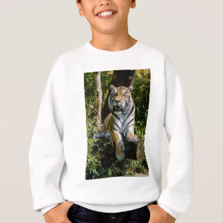 Hi-Res Tiger in Muenster Sweatshirt