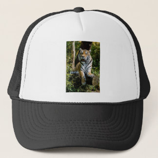 Hi-Res Tiger in Muenster Trucker Hat