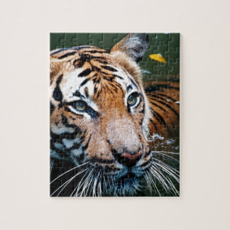 Hi-Res Tiger in Water Jigsaw Puzzle