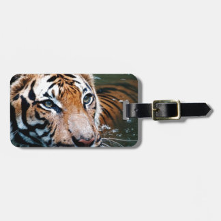 Hi-Res Tiger in Water Luggage Tag