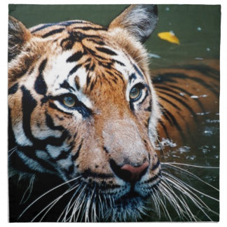 Hi-Res Tiger in Water Napkin