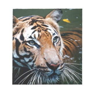Hi-Res Tiger in Water Notepad