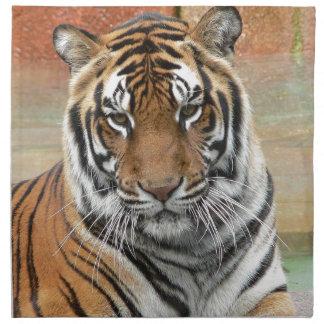 Hi-Res Tigres in Contemplation Cloth Napkin