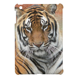 Hi-Res Tigres in Contemplation iPad Mini Case