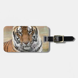 Hi-Res Tigres in Contemplation Luggage Tag