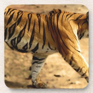 Hi-Res Tigres Stalking Coaster
