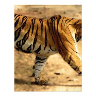 Hi-Res Tigres Stalking Letterhead