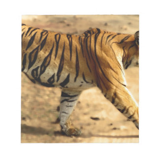 Hi-Res Tigres Stalking Notepads