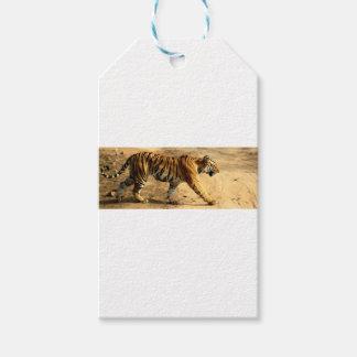 Hi-Res Tigres Stalking Pack Of Gift Tags