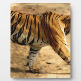 Hi-Res Tigres Stalking Plaque