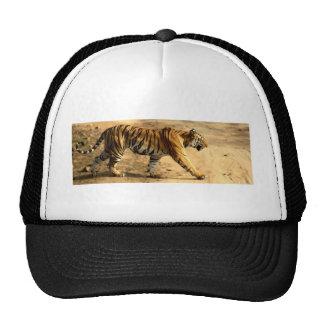 Hi-Res Tigres Stalking Trucker Hat