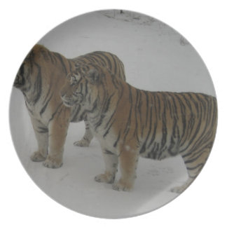 Hi-Res Two Siberian Tigers Dinner Plates