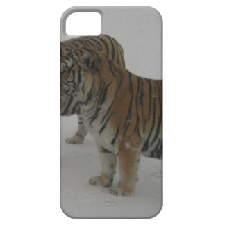 Hi-Res Two Siberian Tigers iPhone 5 Case