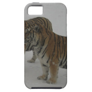 Hi-Res Two Siberian Tigers iPhone 5 Cases
