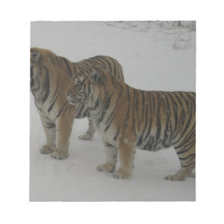 Hi-Res Two Siberian Tigers Notepad
