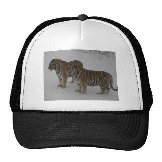 Hi-Res Two Siberian Tigers Trucker Hat