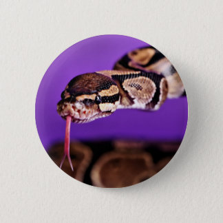 Hi there! 2 inch round button