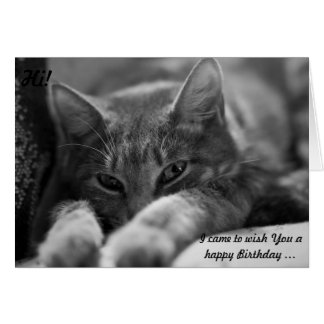 Hi! This cat is coming to wish a Happy Birthday! Card