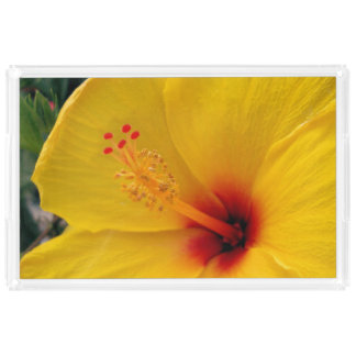 Hibiscus Acrylic Tray