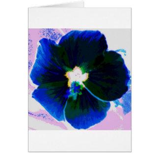 Hibiscus Azul Card