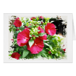Hibiscus Birthday Greeting Card