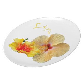 ☼ HIBISCUS , Flower of passion ☼ Plate