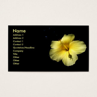 Hibiscus Flower Plant Business Profile Card Photo
