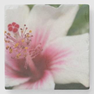 Hibiscus Flower Stone Coaster