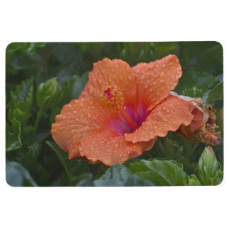 Hibiscus Flower With Raindrops Floor Mat