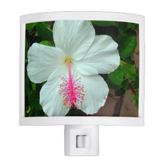 Hibiscus Nightlight Night Lite