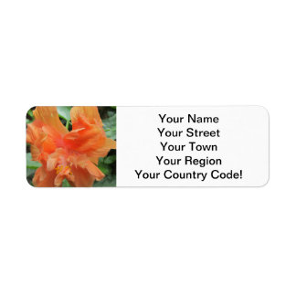 Hibiscus Orange Garden Return Address Label