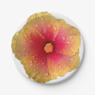 Hibiscus Paper Plates