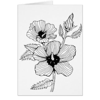 Hibiscus Rose of Sharon Flower Card