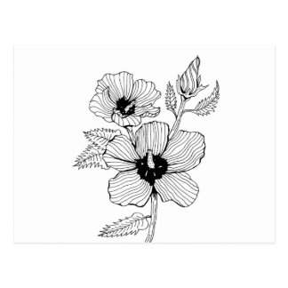 Hibiscus Rose of Sharon Flower Postcard