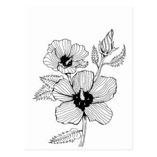 Hibiscus Rose of Sharon Flower Postcard