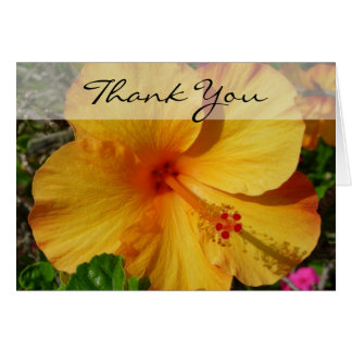 Hibiscus - Thank You Card