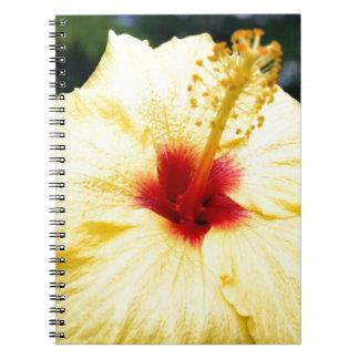 Hibiuscus Notebook