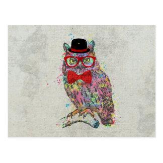 Hibou coloré à la mode drôle frais de couleurs carte postale