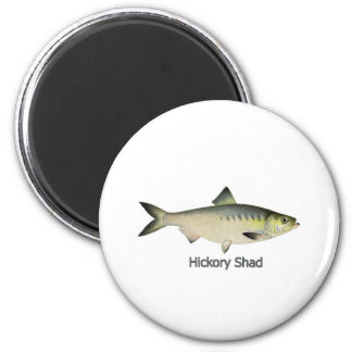 Hickory Shad Magnet