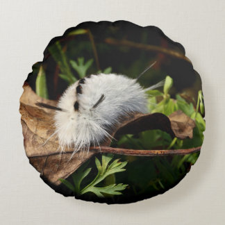 Hickory Tussock Moth Round Pillow