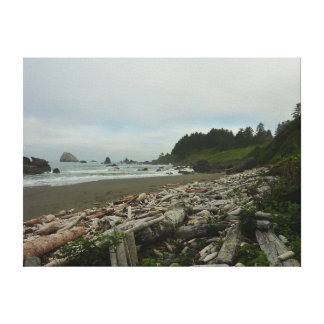 Hidden Beach I at Redwood National Park Canvas Print