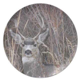 Hidden Buck Deer Dinner Plate