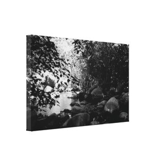 Hidden Creek -Sedona Canvas Print