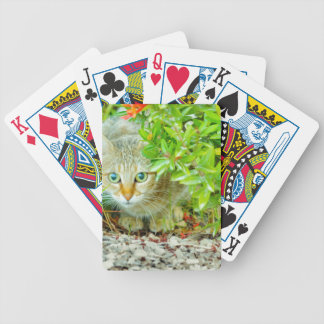 Hidden Domestic Cat with Alert Expression Bicycle Playing Cards