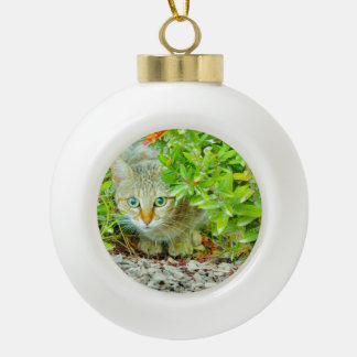 Hidden Domestic Cat with Alert Expression Ceramic Ball Christmas Ornament
